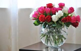 Что нужно сделать чтобы розы дольше стояли