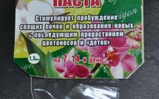 Цитокининовая паста применение для комнатных растений