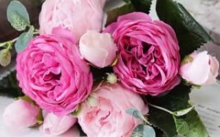 Розовые пионы букет