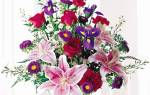 С чем сочетаются лилии в букете