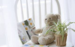 Цветы для детской комнаты