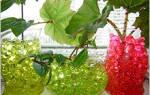 Гидрогелевые шарики для цветов