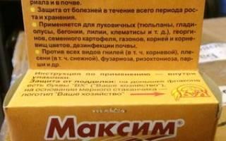 Максим дачник 2 мл инструкция по применению