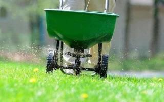Подготовка участка под газон и посев травы
