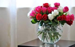 Как реанимировать розы в вазе